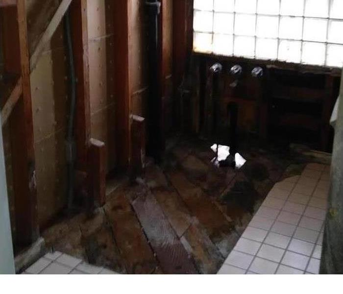 Is Mold In Your Marshall County Home? After