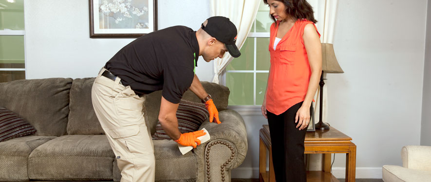 Plymouth, IN carpet upholstery cleaning